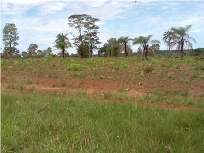 Fazenda A Venda Em Abreulândia - To, ( Dupla Aptidão ) - 492