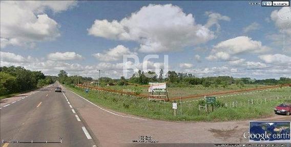 Terreno Em Zona Rural - El50865051