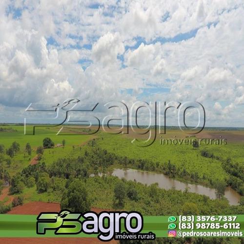 Imagem 1 de 10 de Fazenda À Venda Em Pium/to - 4.210 Ha (870 Alqueires) - Fa0089