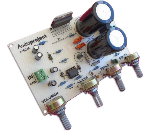 Modulo Amplificador Mono 100 Watts Con Pre - Audioproject