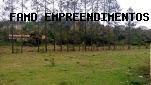Terreno Para Venda Em Campo Limpo Paulista, Parque Internacional - 2000/2117 T - 00041 Tv