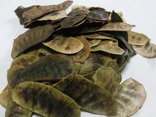 Acacia De La India En Hojas X 1 Kilo - kg a $30500
