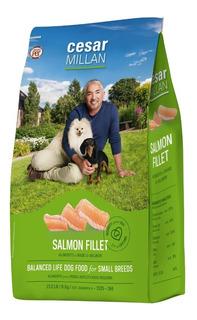 Alimento Holístico Grandpet Cesar Millan Adulto Razas Paqueñas 6 Kg Salmón. Sin Gluten. Caducidad Julio 2020