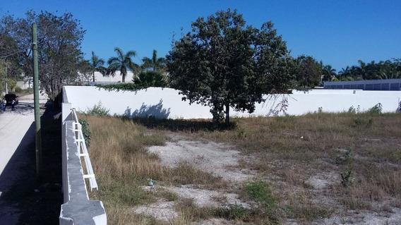 Venta Ó Renta: Terreno Bardeado En Zona Colegios, Cancún, Q. Roo. Ch13.