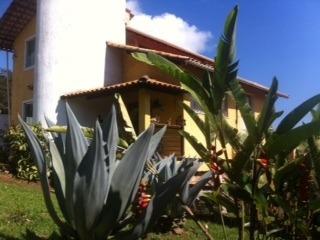 Casa Com 3 Quartos Para Comprar No Piedade Do Paraopeba Em Brumadinho/mg - 356