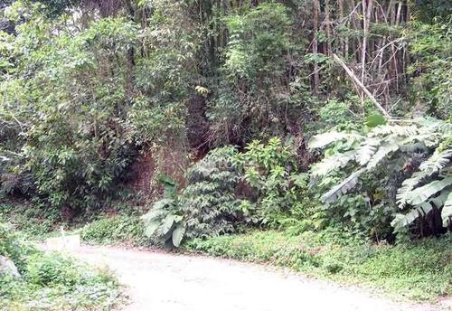 Imagem 1 de 4 de Terreno À Venda, 1475 M² Por R$ 140.000,00 - Pendotiba - Niterói/rj - Te2798