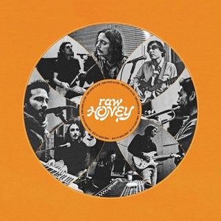 Vinilo : Drugdealer - Raw Honey (lp Vinyl)