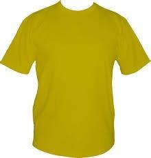 Kit 20 Camiseta Masculina Lisa Poliéster Camisa