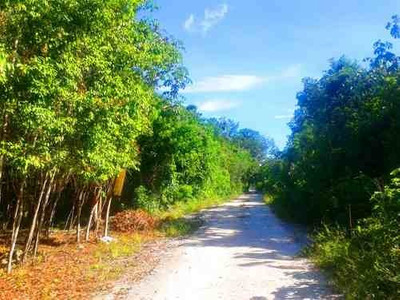 Excelente Terreno Calle Chaca De 1250 M² Escriturado, Ubicado En Central Vallarta Puerto Morelos.