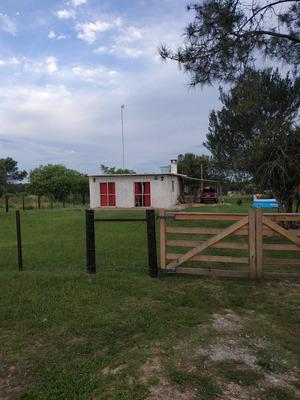 Vendo 3 Excelentes Casas En Balneario Alvorada Y Castillos