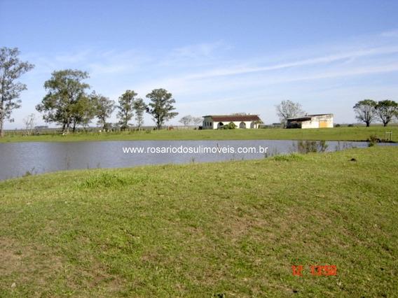 Fazenda Com 1653 Hectares Em Rivera - Uruguai