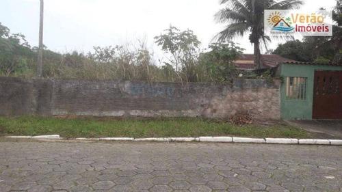 Imagem 1 de 3 de Terreno À Venda, 250 M² Por R$ 80.000,00 - Jardim Jamaica - Itanhaém/sp - Te0105