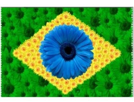 Canga Praia Bandeira Do Brasil Maio Biquini Saida De Banho