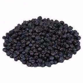 Blueberry / Mirtilo Desidratado Importado Usa - 1kg + Nf