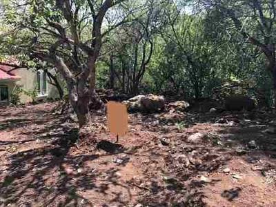 Terreno Plano En Las Cañadas