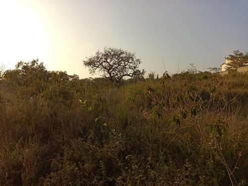 Terreno En Venta En Emiliano Zapata Ver., Zona Pradera Y Hacienda (mata Oscura)
