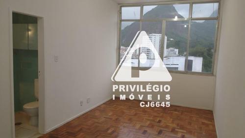 Apartamento Para Aluguel, 1 Quarto, Laranjeiras - Rio De Janeiro/rj - 29489