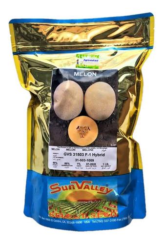 Semillas De Melon Hibrido Sun Valley U S A Gvs31503 1 Libra