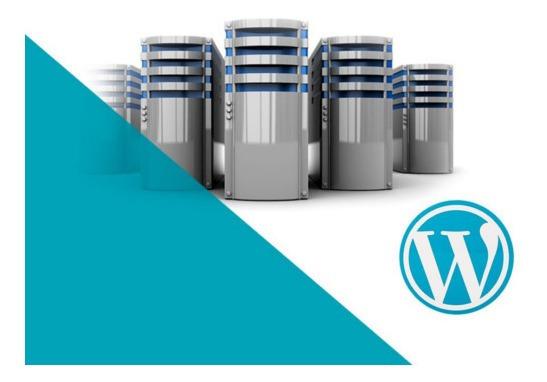 Hosting Economico Para Webs En Wordpress