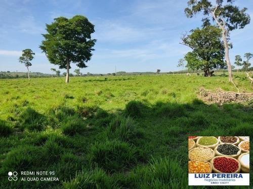 Fazenda À Venda Em Duere - To - De 60 Alqueirões (pecuária) - 1584