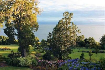 Fundo Quillin / Lago Ranco / Region De L