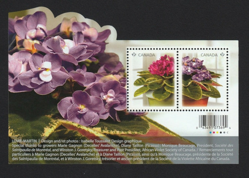 Imagen 1 de 1 de Canadá 2010 : Flores , Flora , Violeta Africana