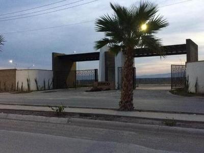 Terreno En Venta Fracc. Villa De Las Palmas (viñedos)