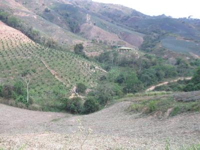 Finca En Venta Lebrija - La Aguada -código(659)