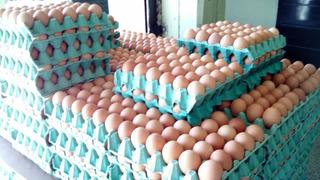 Venta De Huevos Por Mayor!