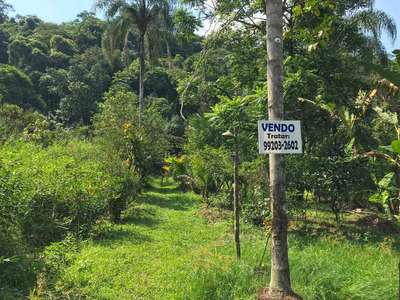 Casa Com Bastante Verde Ao Redor, Ideal Para Plantio