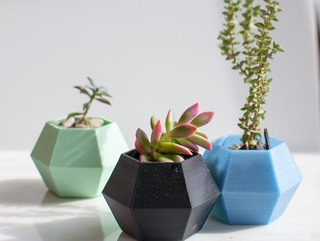 Materos Porrones De Plastico Modernos Para Suculentas Cactus