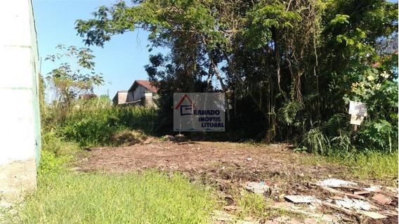 Terreno Para Venda Em Mongaguá, Balneário Itaguaí - 549_1-1148690