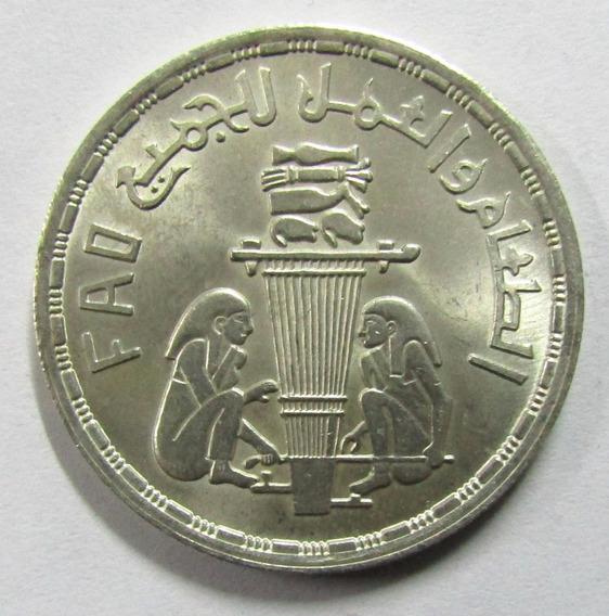 Egipto 1 Pound De Plata Año 1981 Fao Faraones / Alimentos