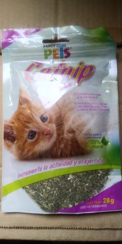 Imagen 1 de 1 de Fancy Pets Catnip Para Gatos 28 Grs Atrayente Uso En Juguetes O Rascadores Aleja Al Felino De Los Muebles
