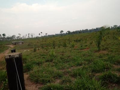 Vendo/arrendo Terras Planas Em Nova Mamore