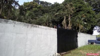 Casas En Venta Tinaquillo