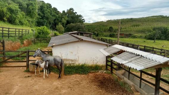Sítio No Sul De Minas , Cidade De Cruzília , Com 15 Ha Muita Água , Represas,e Casa Boa Com 03 Quartos. - 201