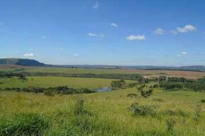 Fazenda Em Monte Santo De Minas Com 193 Ha - Casa Sede - Com Aptidão Gado E Agricultura. - 3422