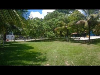 Terreno No Jardim Das Margaridas, Plano, Com 10.000 M - Ar215