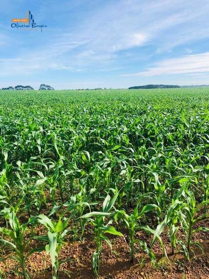 Fazenda Á Venda Às Margens Da Br 060 Sendo 2 Matrículas E Dois Donos (informações A Consultar) - Fa0076