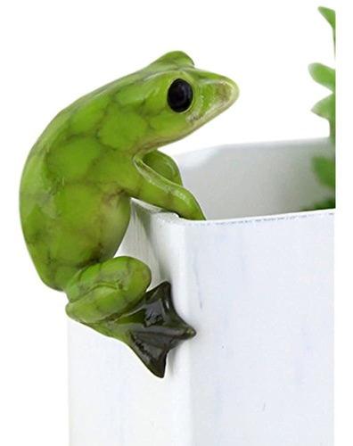 Coleccion Top Miniature Fairy Garden Y Terrarium Frog Flowe