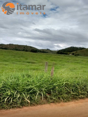 Fazenda De 42 Alqueires Na Região De Itapemirim - Fa00005 - 4578622