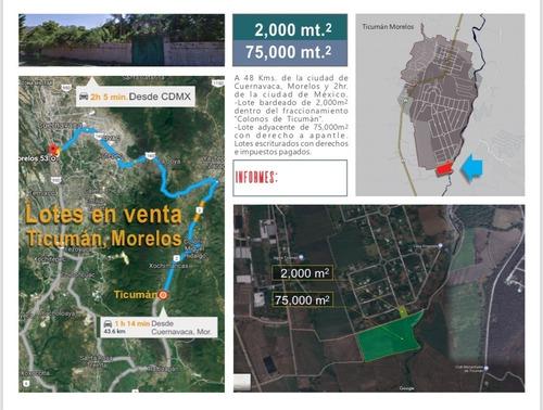 Imagen 1 de 14 de Venta De Terrenos En Ticuman Morelos