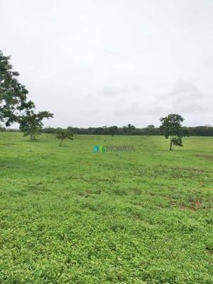 Fazenda - 1000 Ha - Região Buenópolis (mg) - Cod: Mta567