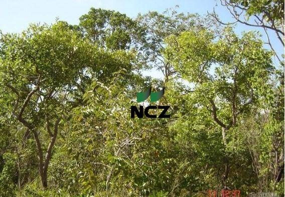 Fazenda À Venda, 10000000 M² Por R$ 1.050.000,00 - Zona Rural - Bom Jesus/pi - Fa0078