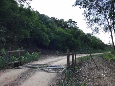 Área Rural Em Bodoquena -ms. 82,7 Hectares Abaixo Do Preço
