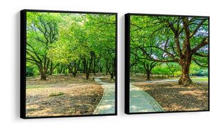Quadro Decorativo Árvores Verdes Parque Caminho Sala Quarto