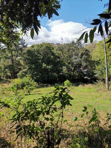 Imagen 1 de 14 de Bella Propiedad, Paz Y Naturaleza, Tranquilidad, Tierras Mor