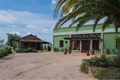 San Jacinto - Chacra Y Hotel Boutique - 61 Hts.
