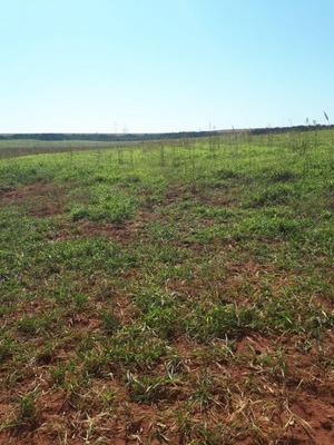 Fazenda A Venda Em Itiquira - Mt - 1012